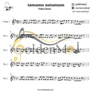violon_tamame_natamam